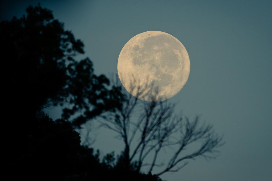 a influência da lua nos signos