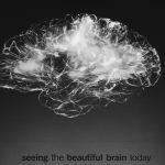 imagem de um cérebro representado em luzes