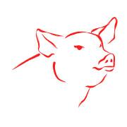 Zodíaco Chinês - Porco