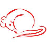 Zodíaco Chinês - Rato