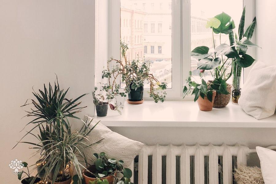 boas energias em casa