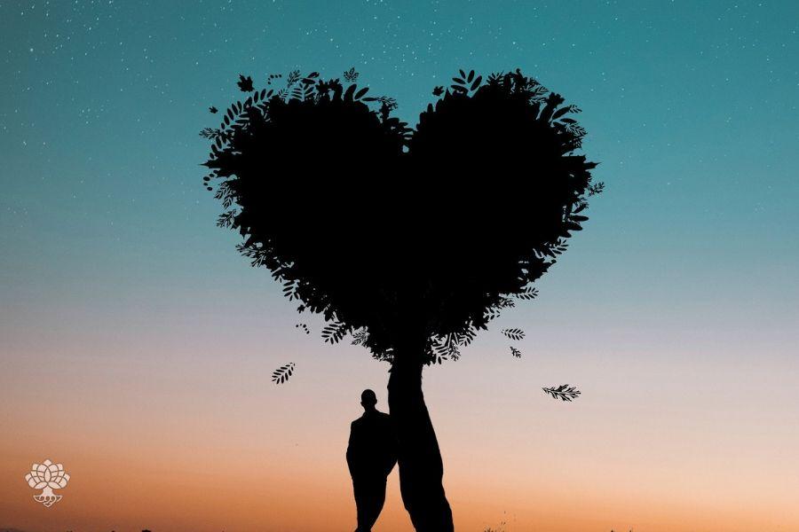 amor signos