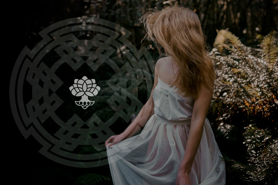 Magia celta - O zodíaco das árvores